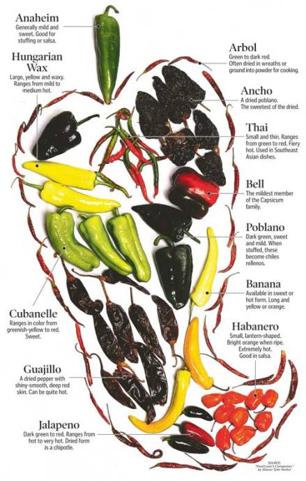 extra_0912_peppers