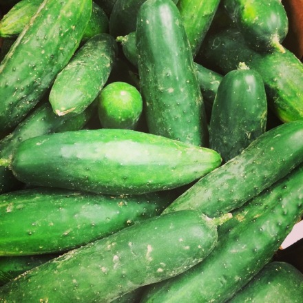 Garden Cukes from Richardson Farm
